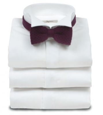 Elegant shirt ingram diplomatic neck regular fit
