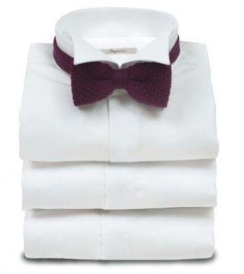 Elegant shirt ingram diplomatic neck slim fit